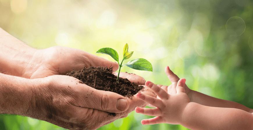 Nos investissements en énergie verte