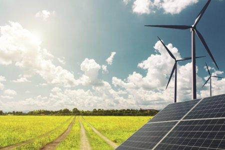 La neutralité carbone pour les entreprises